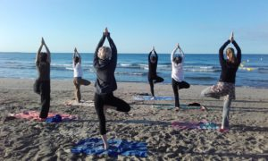 cours de hatha yoga avec soham yoga montpellier
